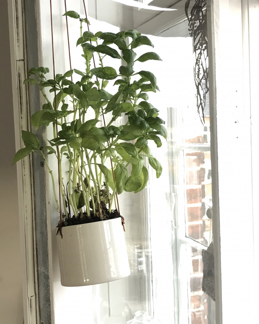 Grow hængende urtepotte lille
